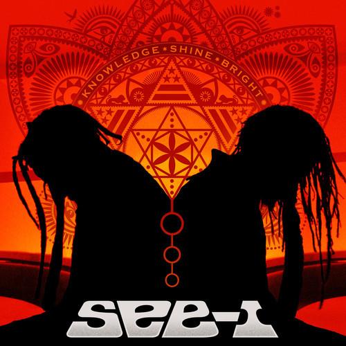 See-i DC Reggae-Funk-Rock Band | New Album | Stream | Washington, DC | LiveMusicDaily