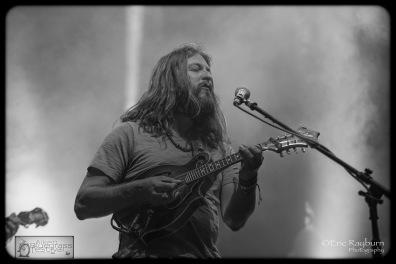 PaulHoffman1-AikenBluegrass2015-LiveMusicDaily17