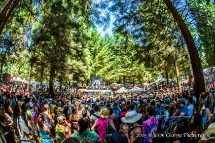 Northwest String Summit-20150719315-119