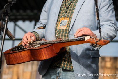 Dishonest Fiddlers (5)