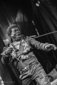 2016 Nelsonville Music Festival - Charles Bradley-9