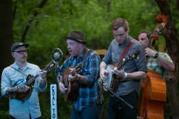 Duck Creek Log Jam - Coal Town Rounders-1