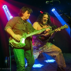 Hayseed Dixie_Woodlands Tavern_040117-29
