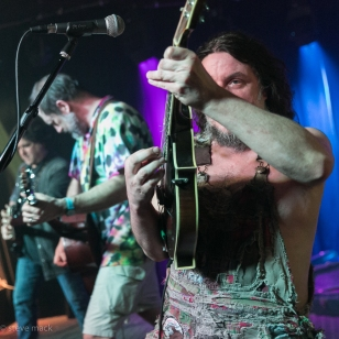 Hayseed Dixie_Woodlands Tavern_040117-3