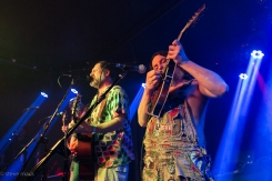 Hayseed Dixie_Woodlands Tavern_040117-35