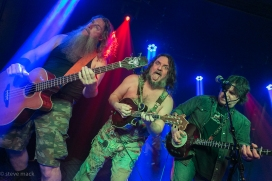Hayseed Dixie_Woodlands Tavern_040117-6