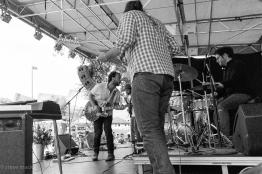 Nelsonville Music Festival 2017-2